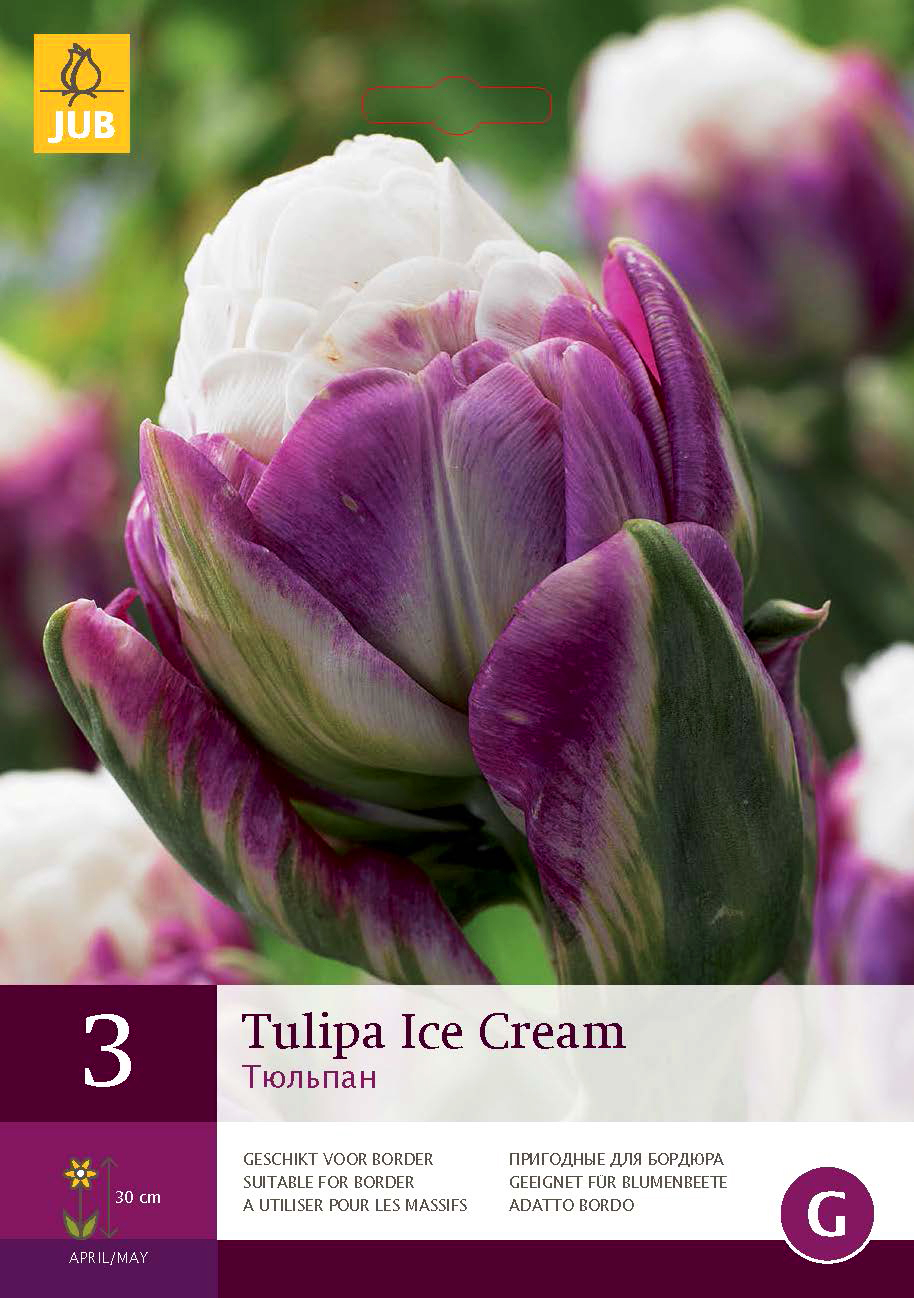 icecream_tulppaani.jpg
